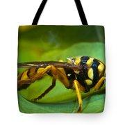 Beautiful Syrphid Tote Bag