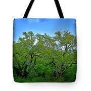 Beautiful Texas View 2 Tote Bag