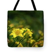 Beautiful Vibrant Yellow Lily Flower In Summer Sun Tote Bag