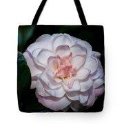 Beautiful White Camellia Tote Bag
