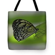 Beautiful White Tree Nymph Butterfly On  A Leaf Tote Bag