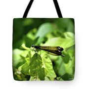 Beautiful Wings Tote Bag