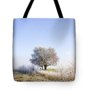 Beautiful Winter Background With Snow Tipped Trees Tote Bag