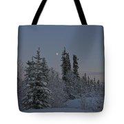 Beautiful Winter Evening Tote Bag