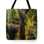 Beautiful Woodlands Tote Bag