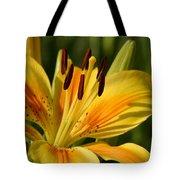 Beautiful Yellow Lily Tote Bag