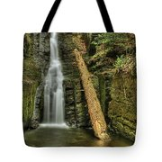 Beautifully Confined Tote Bag