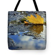 Beauty Above And Below Me Tote Bag