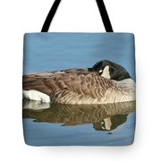 Beauty At Rest Tote Bag