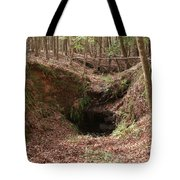 Beauty Below Tote Bag