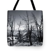 Beauty  Beyond The Fire Tote Bag