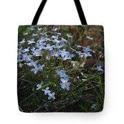 Beauty Blue Flowers Tote Bag