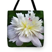 Beauty Can't Be Dampened - Festiva Maxima Double Peony Tote Bag