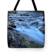 Beauty Creek Tote Bag by Larry Ricker
