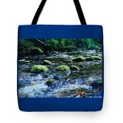 Beauty Discovered In The Wicklow Mountains Tote Bag