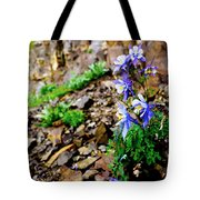 Beauty Elevated Tote Bag
