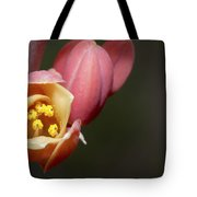 Beauty Emerges Tote Bag