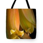 Beauty Evolves Into Harmony Tote Bag