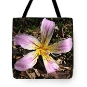 Beauty From Above Tote Bag