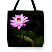 Beauty From The Shadows Tote Bag