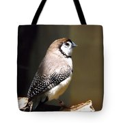 Beauty In Light Tote Bag