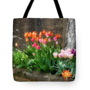 Beauty In Ruins Tote Bag by Michael Hubley