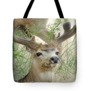 Beauty In Summer Tote Bag