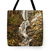 Beauty In The Berkshires Tote Bag