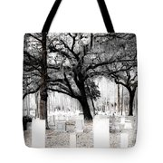 Beauty In The Bleakness Tote Bag