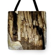 Beauty In The Cave Tote Bag