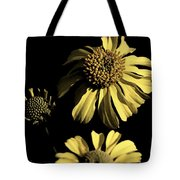 Beauty In The Darkness Tote Bag