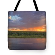 Beauty In The Eye Of The Beholder Tote Bag