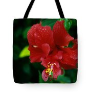 Beauty In The Jungle Tote Bag