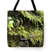 Beauty In The Northwest Tote Bag