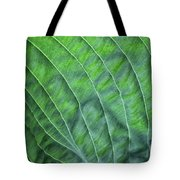 Beauty In The Shadows Tote Bag