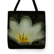 Beauty In The Sun Tote Bag