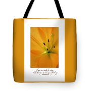 Beauty Is Its Own Excuse Poster Tote Bag