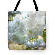 Beauty Is Transcendent Tote Bag