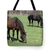 Beauty Tote Bag