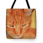Beauty Of A Cat Tote Bag