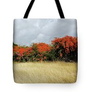 Beauty Of Bougainvillea Tote Bag