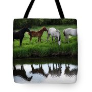 Beauty Of Place Tote Bag