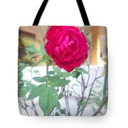 Beauty Of  Red Rose  Tote Bag