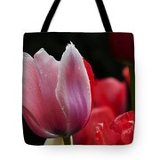 Beauty Of Spring Tulips 1 Tote Bag