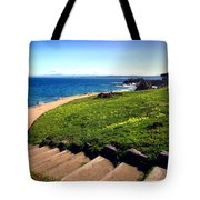 Beauty Of The Pacific Grove Shoreline Two Tote Bag