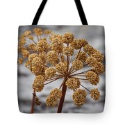 Beauty Of The Seeds Tote Bag