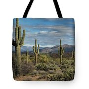 Beauty Of The Sonoran  Tote Bag
