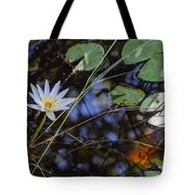 Beauty Of The Swamp Tote Bag