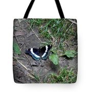 Beauty On The Dusty Path Tote Bag