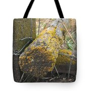 Beauty On The Ranch Tote Bag